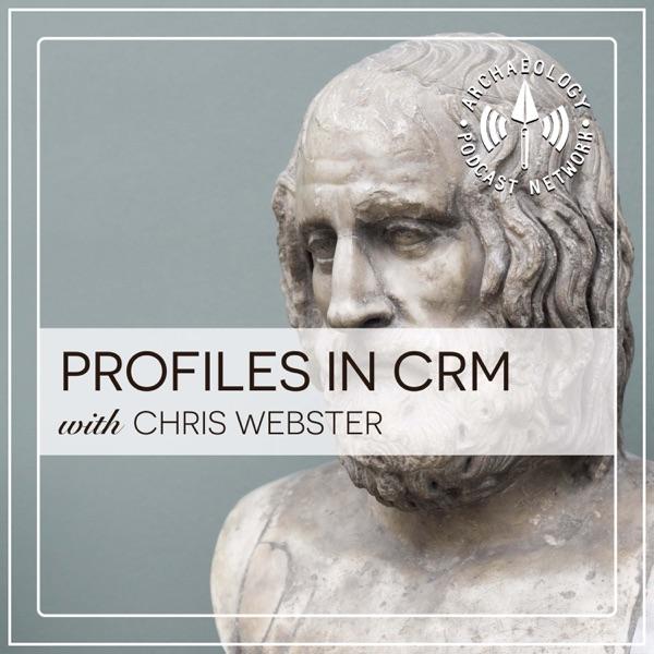Profiles in CRM