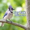 Jay Talk artwork
