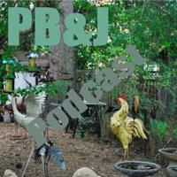 PB&J Podcast podcast