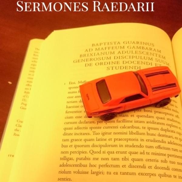 Sermones Raedarii