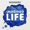 Imagined Life artwork