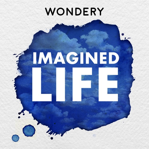 Cover image of Imagined Life