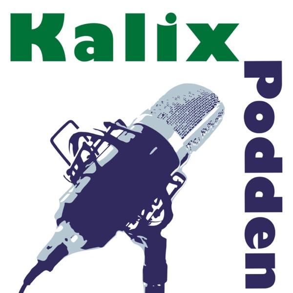 Kalixpodden