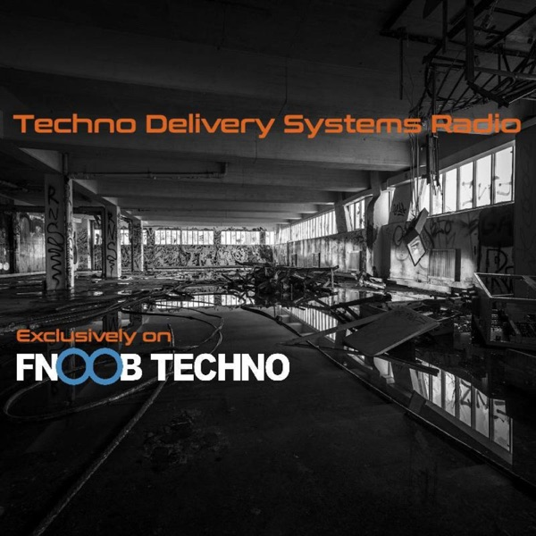 Techno Delivery Systems Radio