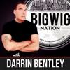 Big Wig Nation with Darrin Bentley artwork