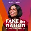 Fake The Nation artwork