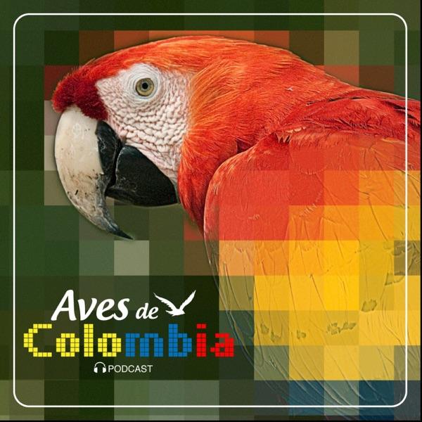 Aves de Colombia- Colombian Birds.