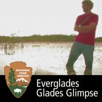 Everglades - Glades Glimpse podcast