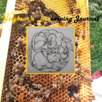 Yolybear's Beekeeping Journal podcast