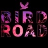 Bird Road Podcast - All Points West artwork