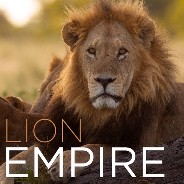 Lion Empire (HD) – Podcast – Podtail