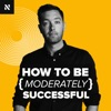 How to be Moderately Successful. artwork