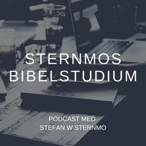 Sternmos bibelstudium