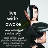 11. Doug Woodring & Andrea Richey: Dried Ocean - a wet place but a dying place & Shark conservation - why it matters