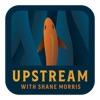 Upstream artwork