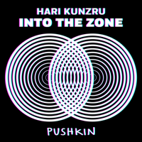 Into the Zone podcast