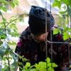 Abundant Living and Gardening artwork