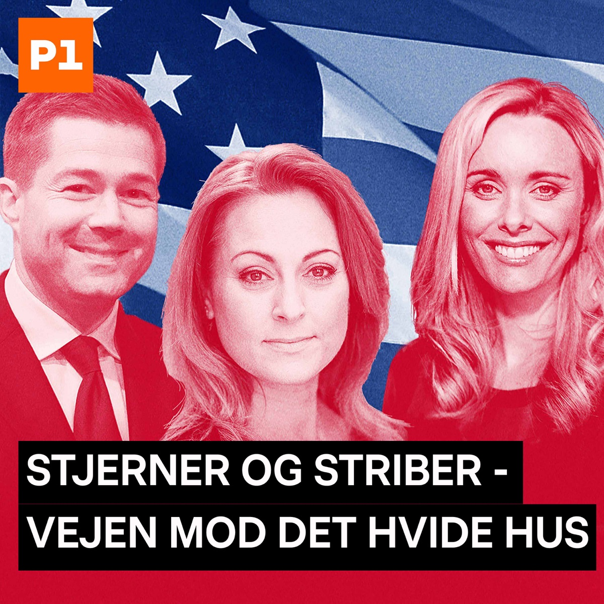 Stjerner og striber - The State of the Race
