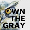 Own The Gray artwork