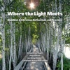 Where The Light Meets: Buddhist & Christian Reflections and Practice artwork