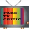 Fake TV Critic artwork