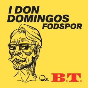 I Don Domingos Fodspor