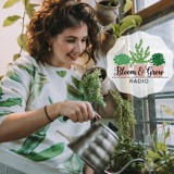 Styling with Plants with Danae from Folia Collective