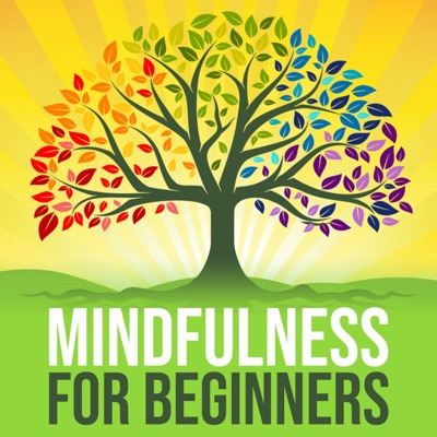 Mindfulness For Beginners:Shaun Donaghy