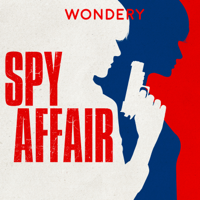 Spy Affair