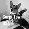 Corgi Town USA artwork