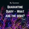 Quarantine Diary-What are the odds? artwork