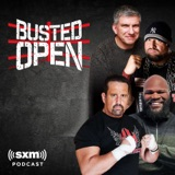 Image of Busted Open podcast