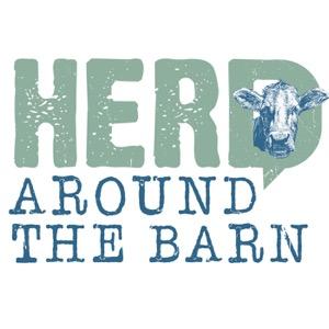 Herd Around the Barn