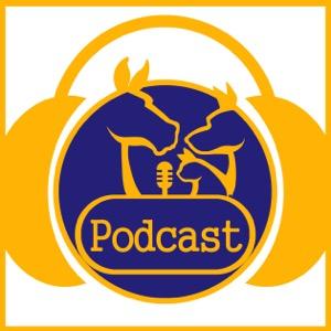 Vet Talk the Veterinary Podcast