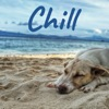 Chill artwork