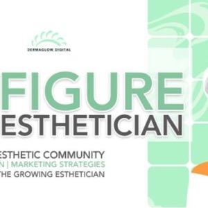 The Six Figure Esthetician Show