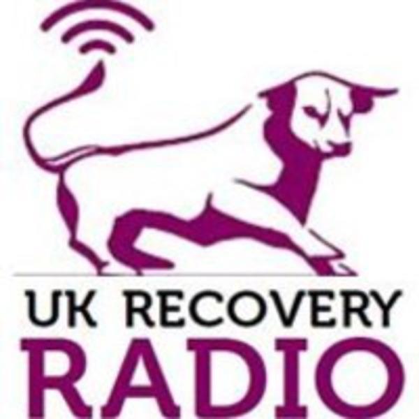 The Purple Bull Podcast