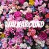 Walkaround artwork