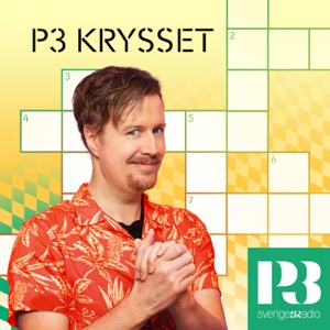 P3 Krysset
