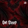 Owl Sleep artwork