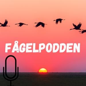 The fagelpodden's Podcast