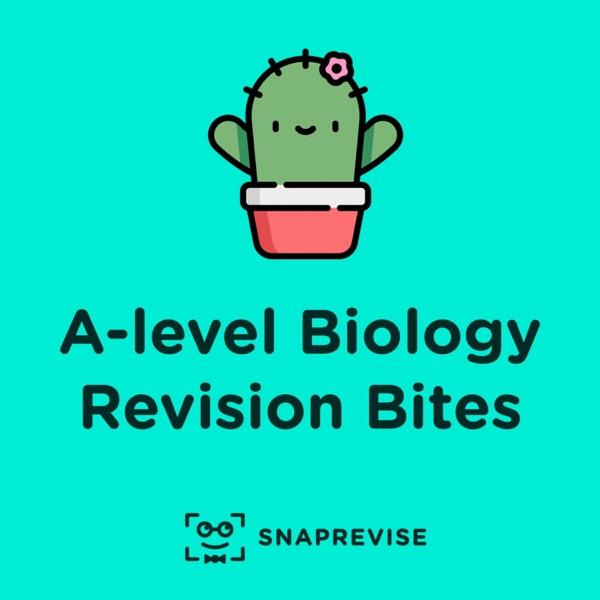 A-level Biology Revision Bites
