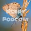 Ncert Podcast artwork