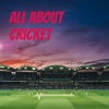 All About Cricket artwork