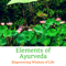 Elements of Ayurveda