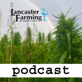 Lancaster Farming Industrial Hemp Podcast on Apple Podcasts