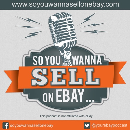 Cover image of So You Wanna Sell On eBay