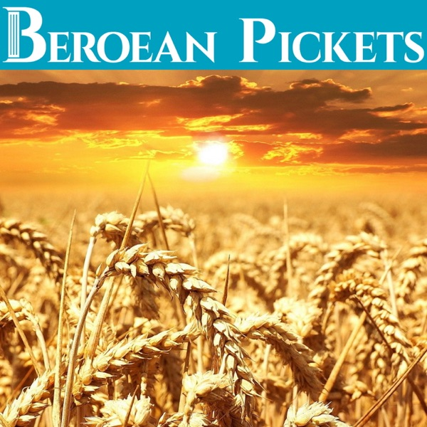 Beroean Pickets – JW.org Reviewer