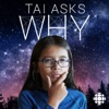 Tai Asks Why artwork