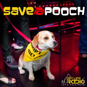 Save A Pooch - Rescue Dog Welfare on Pet Life Radio (PetLifeRadio.com)